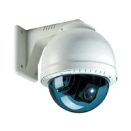IP Cam Viewer