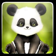 Panda Bobble Live Wallpaper