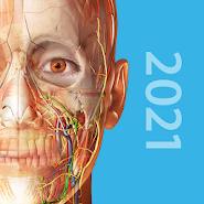 Human Anatomy Atlas v2020.0.73 (2021) | Android uchun darsliklar 2021.