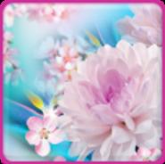 Falling Flowers Live Wallpaper