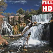 Beautiful Waterfall Live HD