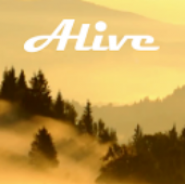 Forest Alive Video Wallpaper + (Видео-обои Лес +)