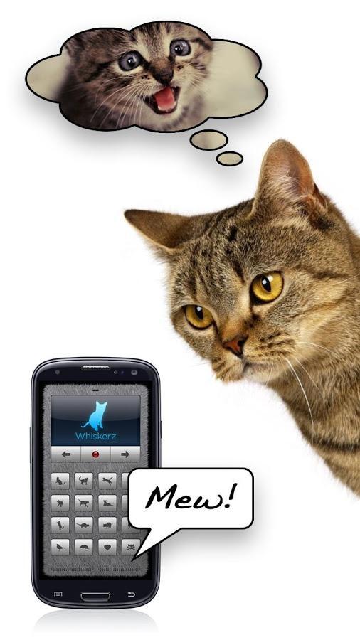 Котоязык приложение для перевода с кошачьего на человеческий.