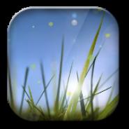 Xperia Z Cool Grass LWP