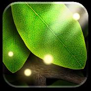 Tap Leaves LWP
