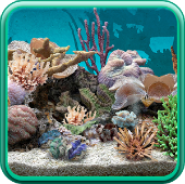 3D Aquarium Live Wallpaper PRO