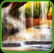 Лесной Водопад Живые Обои