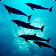 Глубины Океана 3D