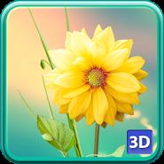 3D Цветы Живые Обои