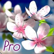 Spring Flowers 3D Parallax