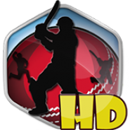 Box Cricket 2014 HD