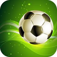 Winner Soccer 2014