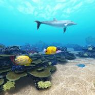 Tropical Ocean 360°