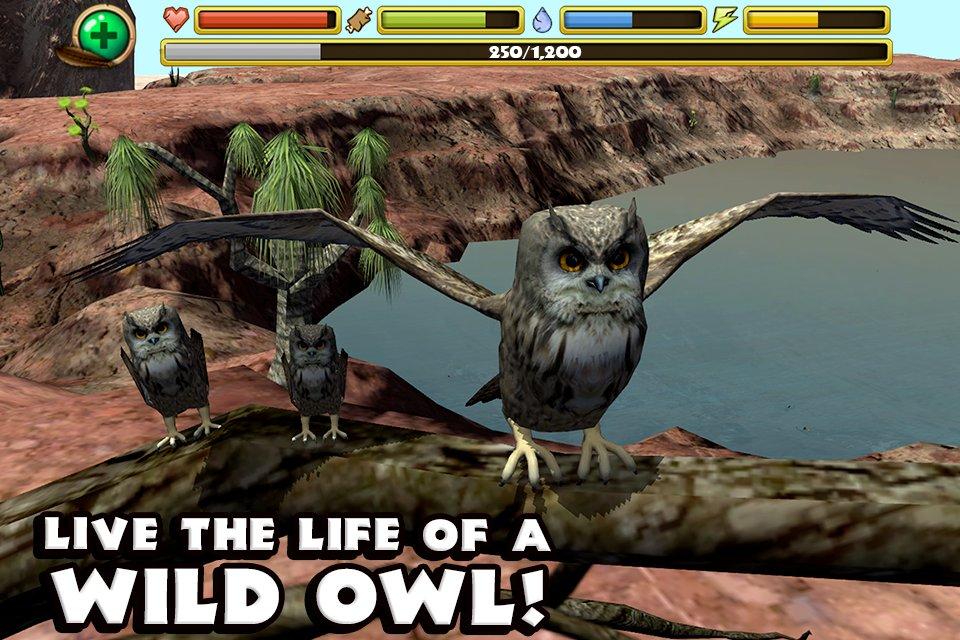 Симулятор совы скачать на андроид