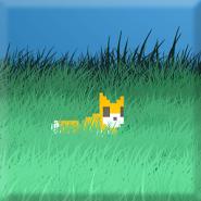 Fox Tap