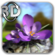 Nature Live Spring Flowers 3D