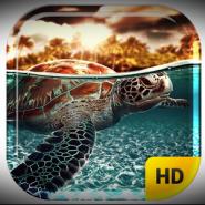 Ocean Turtle Water Pool