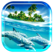 Dolphin Ocean Ripple Effect