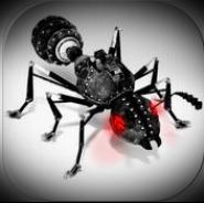 Ant - Maniac