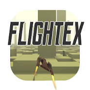 Flightex