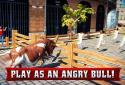 Angry Bull 2016