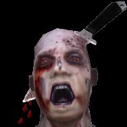 The Last Zombie Hunter
