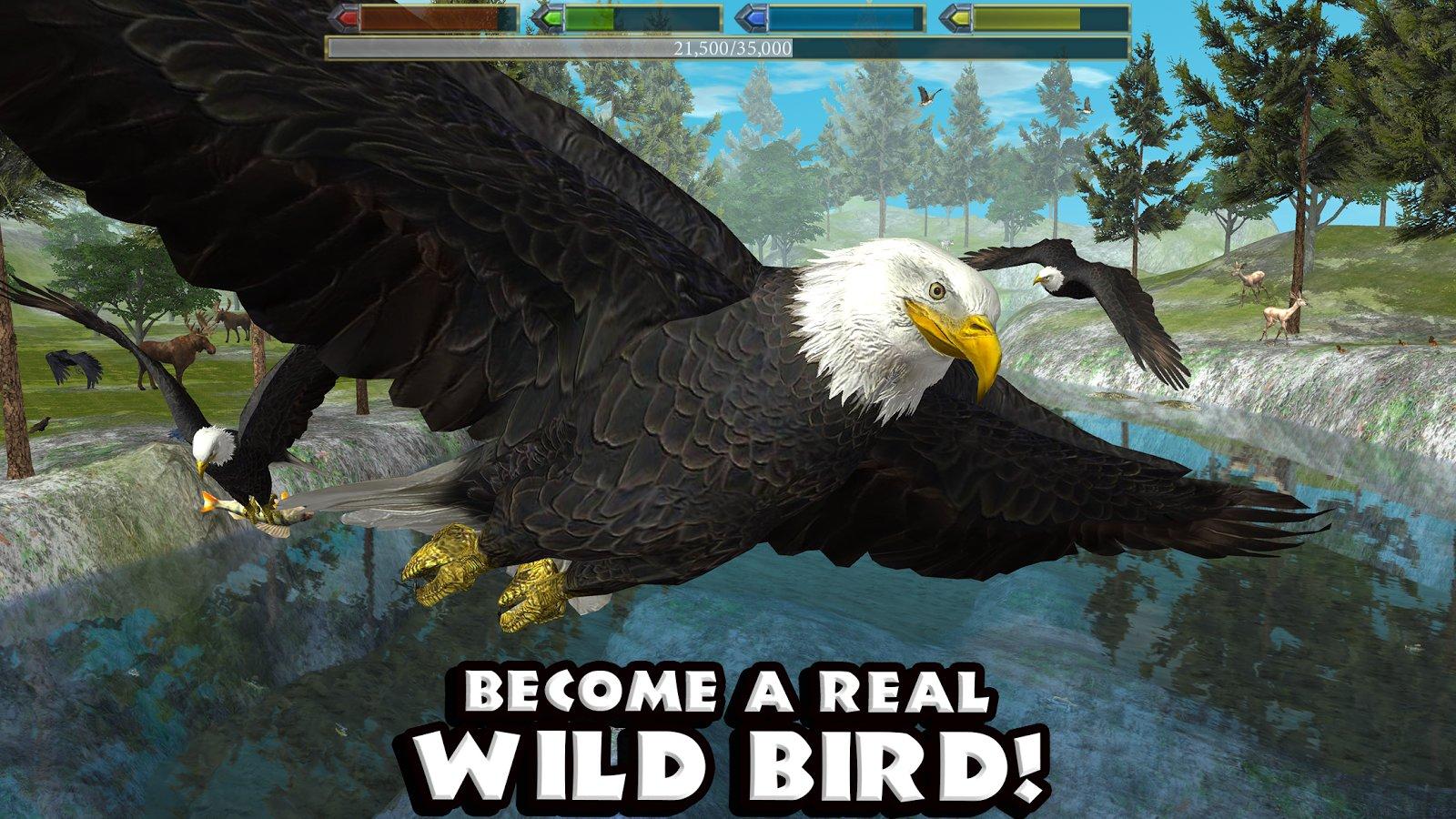 Симулятор птицы картинки