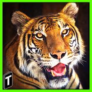 Super Tiger Sim 2017