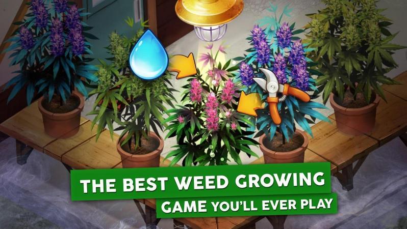 Скачать игру выращивания конопли стебель конопли