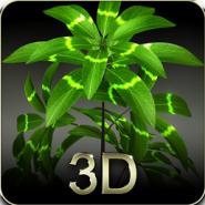 My 3D plant
