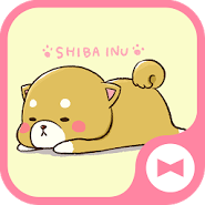 Dog Wallpaper Cute Mini-Shiba Theme