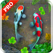 Koi Pond Pro Live Wallpaper