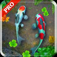 Koi Pond Pro Live Wallpaper