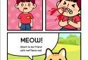 Taming a stray cat