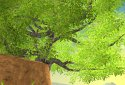 Nature Tree Milky Way live wallpaper