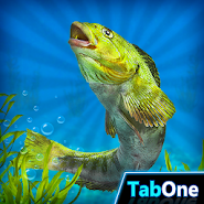 My Fishing HD 2