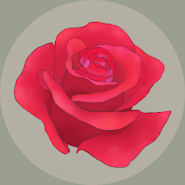 Rosa's Garden