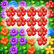 Garden Flowers Blossom