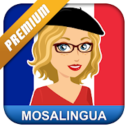 Learn French with MosaLingua