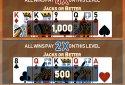 Video Poker Multi Bonus