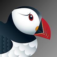 Puffin Browser Incognito