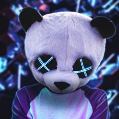 Pandaster